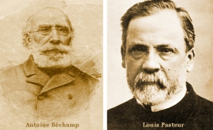 Pasteur- Béchamp