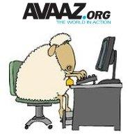 Avaaz-01