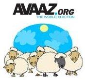 Avaaz-02